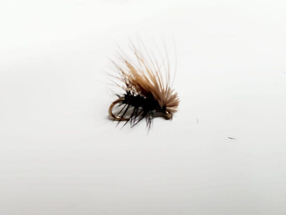 Elk Hair Caddis Noir