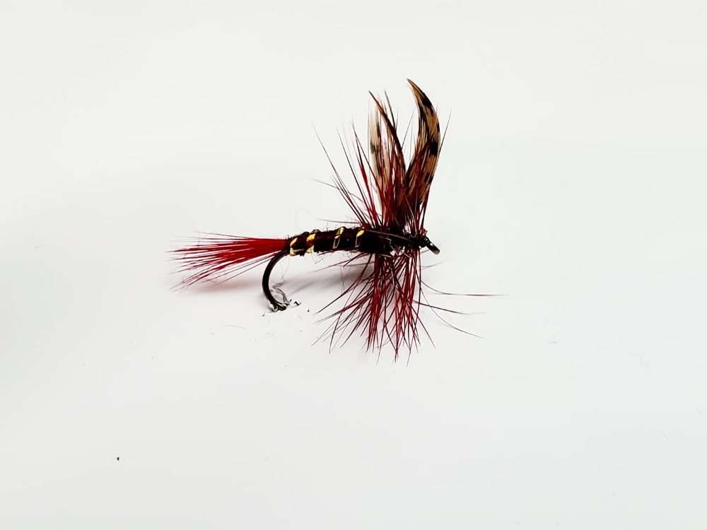 mouche dark montreal