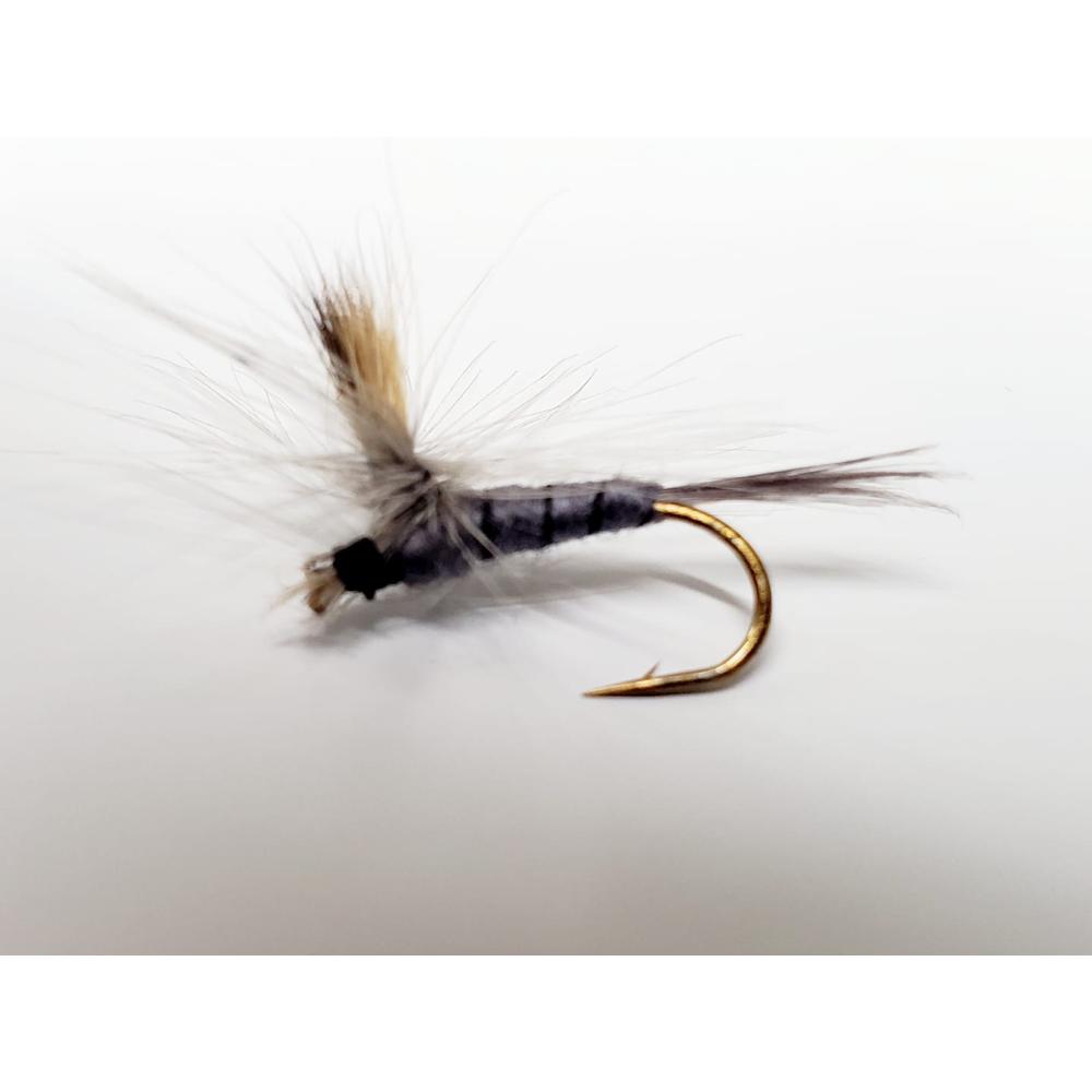 mouche éphémère grise subimago