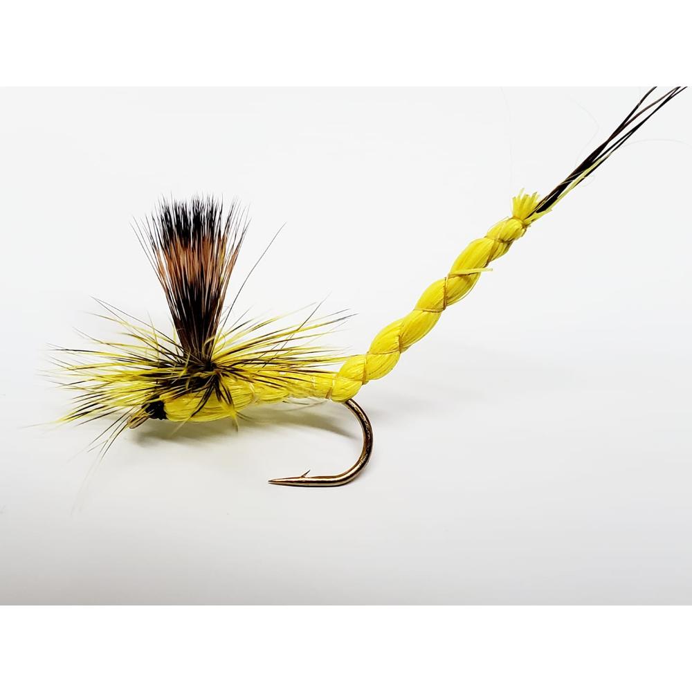 mouche éphémère jaune imago