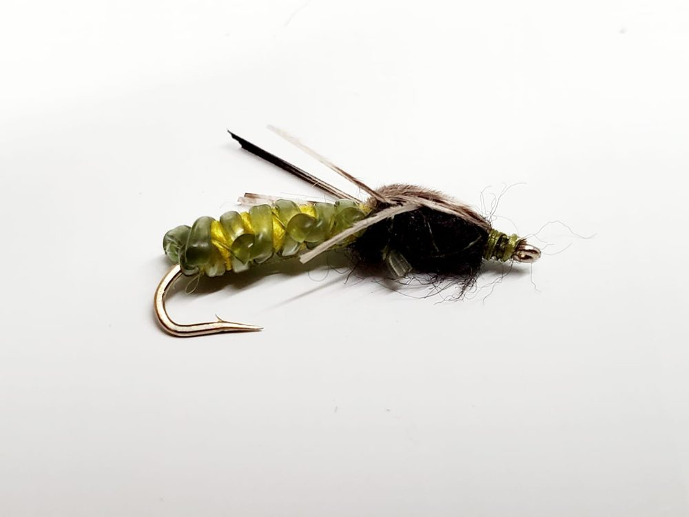 mouche rock worm caddis