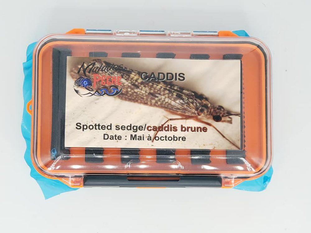 boite à mouche Caddis Brune